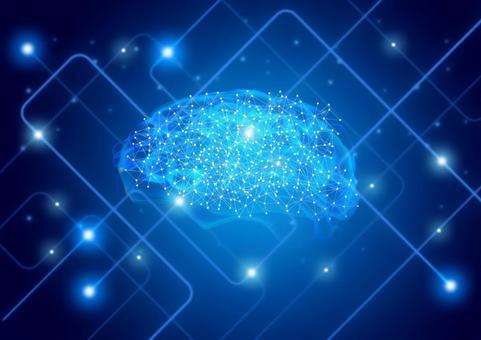脳トレ脳筋トレ,脳の構造についての画像